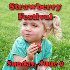 strawberry festival copy